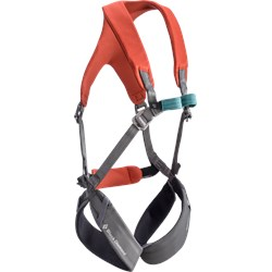 Momentum Kid's Full Body Harness